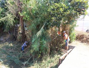 Tarımsal sulama kanallarında temizlik