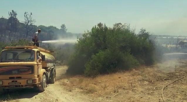 Yangında 15 dönüm makilik alan, 20 zeytin ağacı ve çam ağaçları zarar gördü