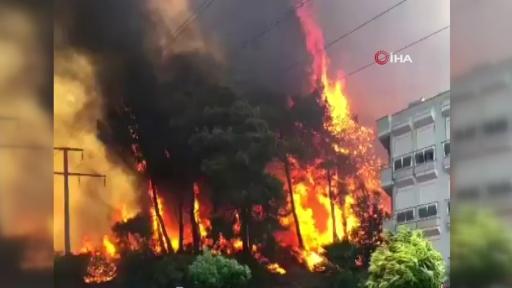 Yerleşim yerlerine sıçrayan yangına müdahale havadan ve karadan  sürüyor