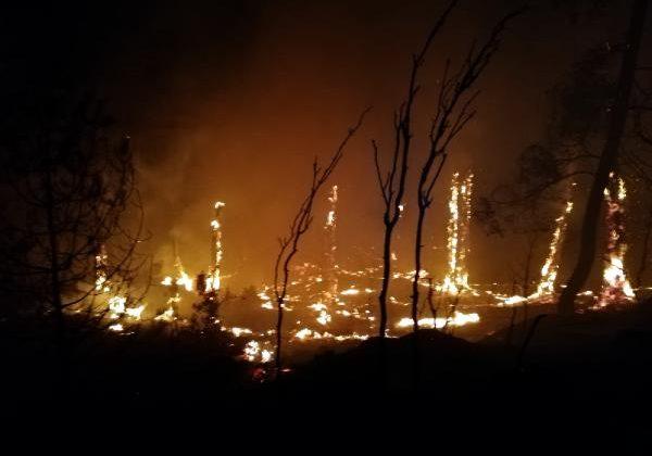 1 haftada aynı bölgede beşinci orman yangını
