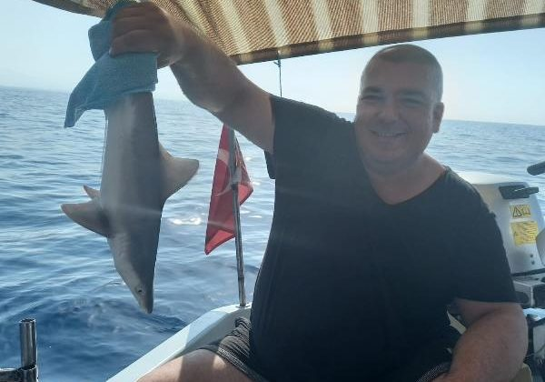 Ağa takılan yavru köpek balığını kurtarıp, denize bıraktı