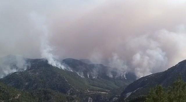 Akseki yangının şüphelisi, 20 hektar ormanın yandığı yangının da şüphelisi çıktı