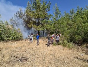 Akseki'deki orman yangını devam ediyor