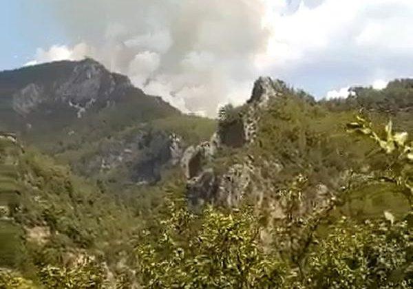 Alanya'da orman yangını (1)