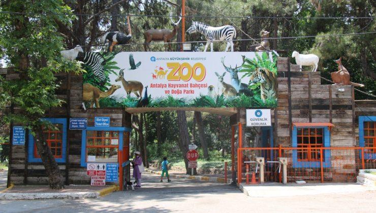 Antalya Hayvanat Bahçesi ziyarete kapatıldı