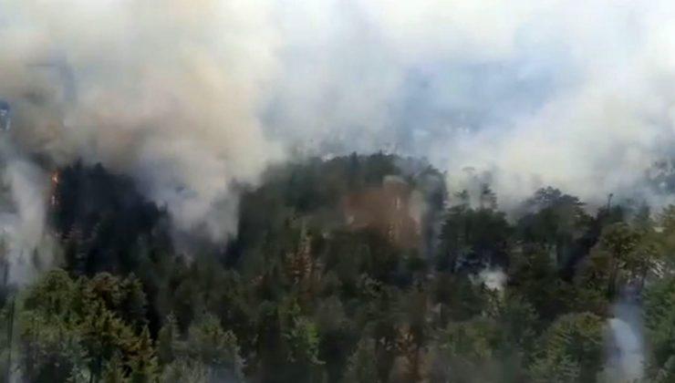 Antalya'da orman yangını başladı