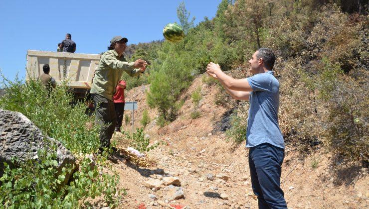 Antalya'da yangından etkilenen yaban hayatı unutulmadı