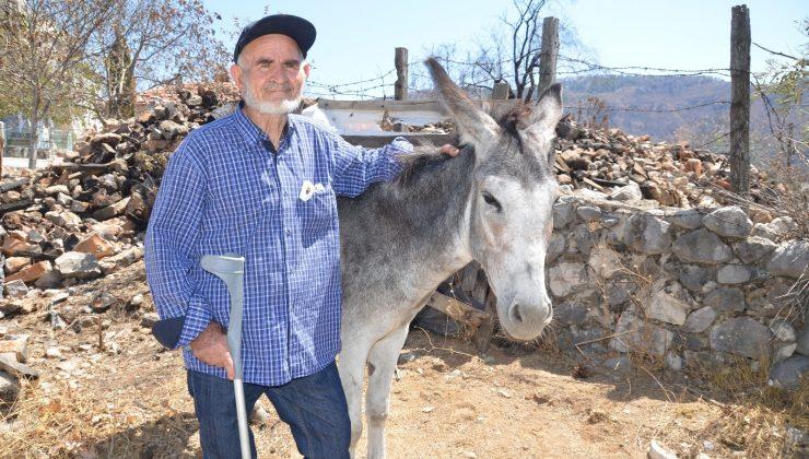 Antalya'daki orman yangınından 82 yaşındaki yaşlı adamı jandarma kurtardı