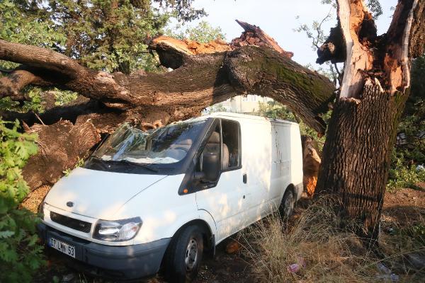 Antalya'daki yangınlarda soğutma çalışmaları sürüyor (13)