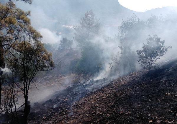 Bahçe yangını ormanlık alana sıçramadan söndürüldü