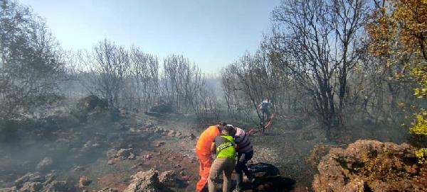Çalılık alanda korkutan yangın