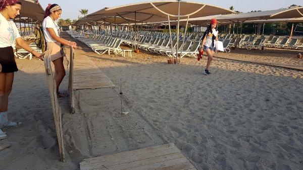 Caretta sahilinde 5 yıldızlı katliam