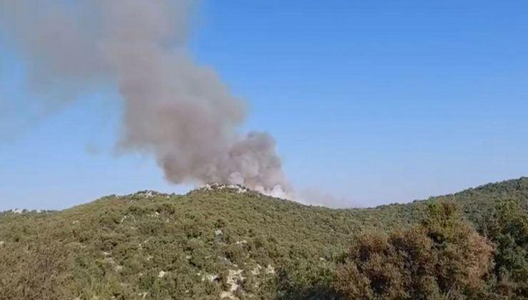 Demre'de de orman yangını çıktı