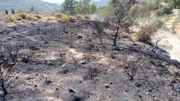 Kaş'da yangın ormana sıçramadan söndürüldü