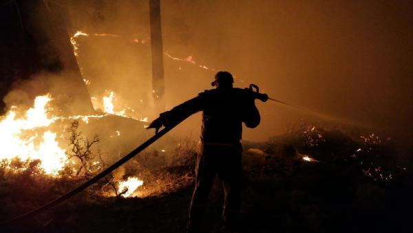 Kaş'ta aynı bölgede üç günde üçüncü yangın