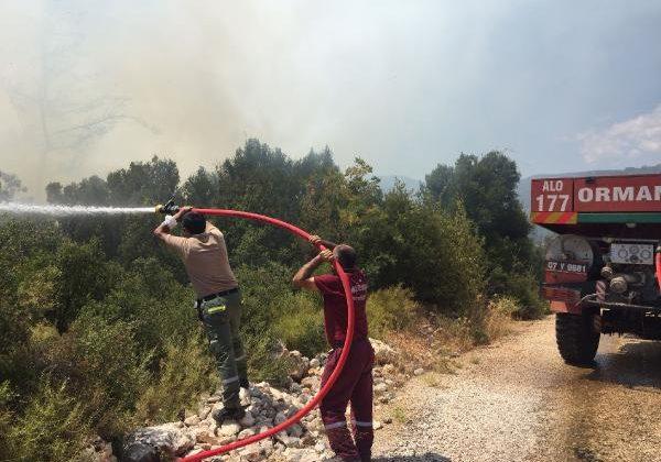 Kaş'ta makilik alanda yangın