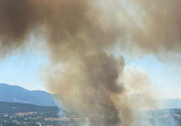 Kaş'ta orman yangını 2 saatte kontrol altına alındı (2)