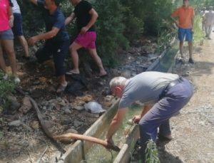 Kemer'de çıkan orman yangınları kontrol altına alındı