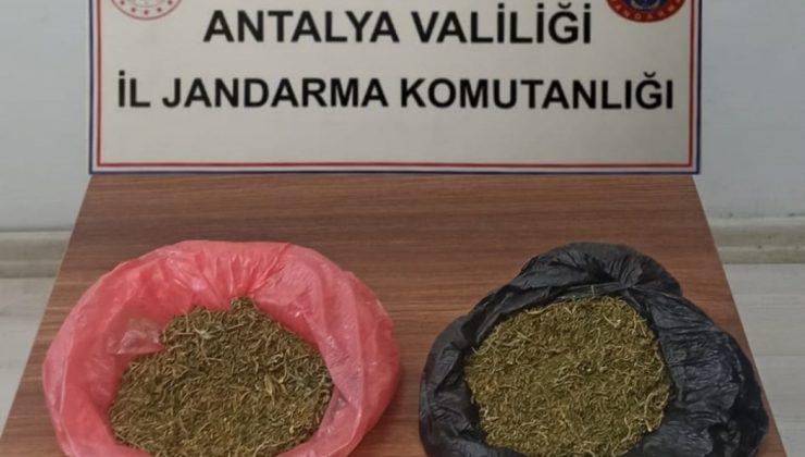 Korkuteli ilçesinde 160 gram uyuşturucu ele geçirildi