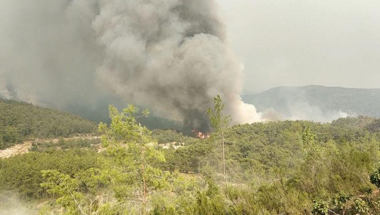 Manavgat'ta alevlerle mücadele sürüyor: Dumanlar gökyüzünü kapladı