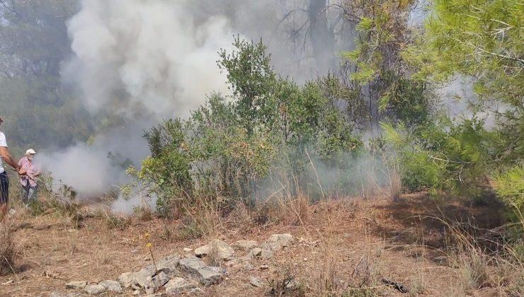 Manavgat'ta mezarlıkta çıkan yangın kontrol altına alındı