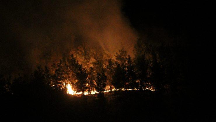 Manavgat'ta otellere yakın noktada yangın çıktı, silahını alan nöbete koştu