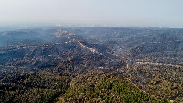 Manavgat'taki büyük yangın 10'uncu gününde (2)