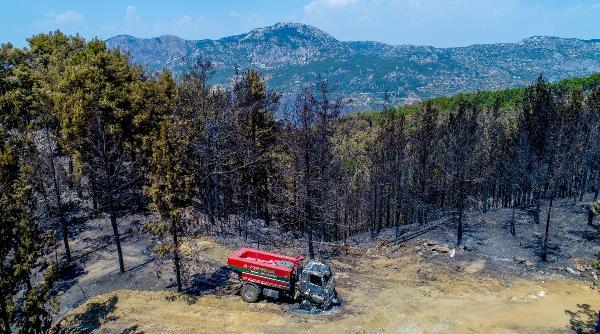 Manavgat'taki büyük yangın 10'uncu gününde (8)