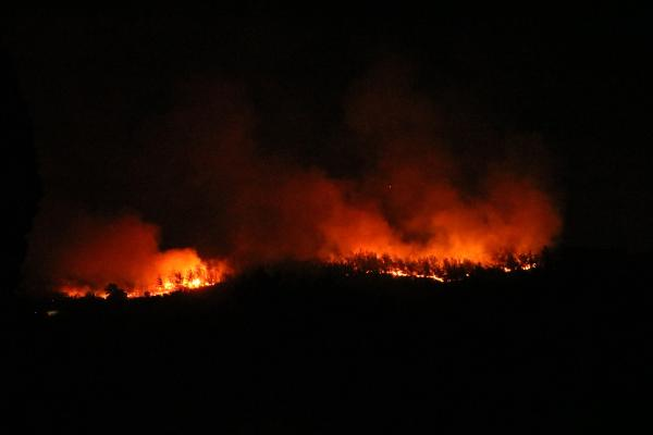 Manavgat'taki büyük yangın 5'inci gününde (13)