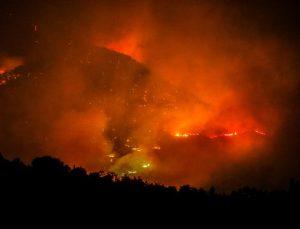 Manavgat'taki büyük yangın 5'inci gününde (14)