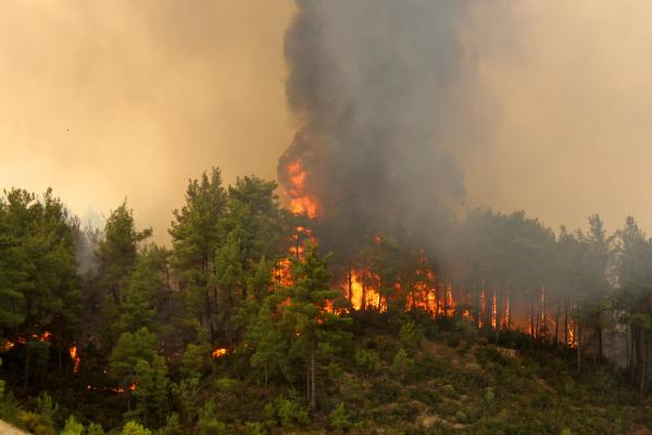 Manavgat'taki büyük yangın 6'ncı gününde (15)
