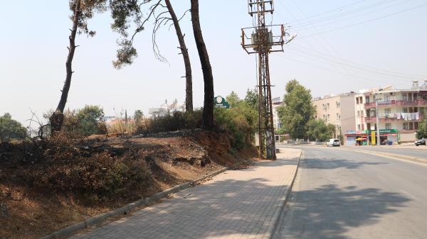 Manavgat'taki büyük yangın 8'inci gününde (12)