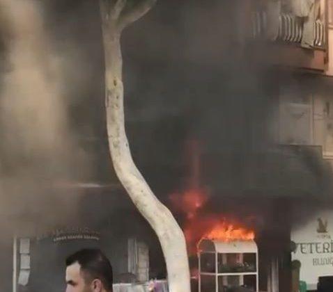 Turizm merkezinde çıkan yangın korku dolu anlar yaşattı