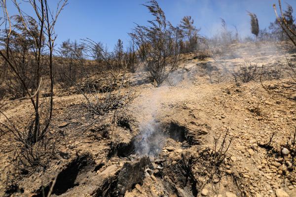 Yangın bölgesi Manavgat'ta, yaralar sarılıyor (6)