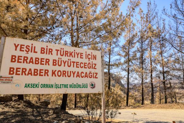 Yangın bölgesi Manavgat'ta, yaralar sarılıyor / Ek fotoğraflar