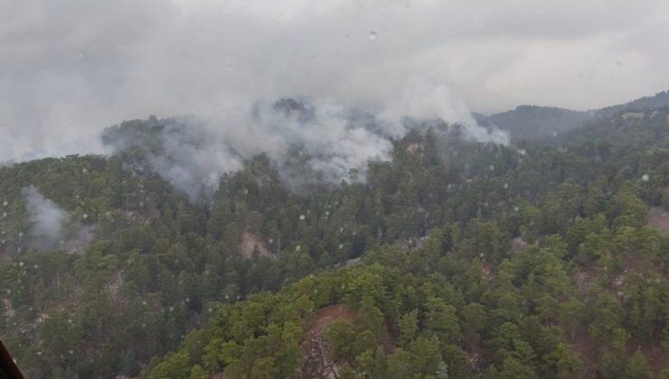 Antalya'da düşen yıldırım, 4 hektarlık ormanı yaktı
