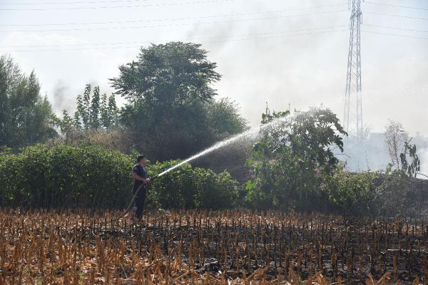 Antalya'da tarla yangını, ev ve seralara ulaşmadan söndürüldü
