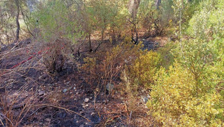 Beymelek'te çıkan orman yangın söndürüldü