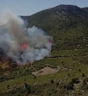 Burdur Bucak'ta orman yangını