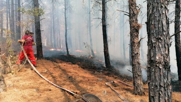 Kaş'ta orman yangını (1)