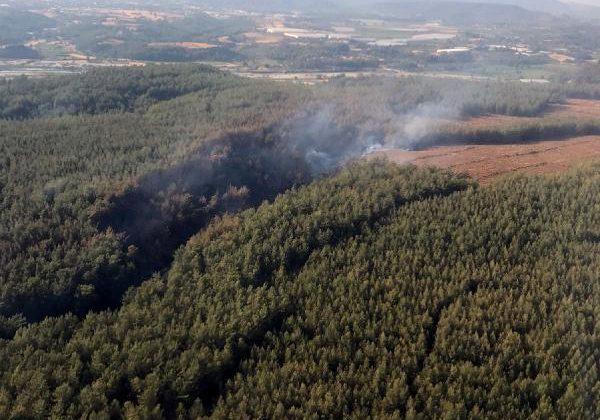 Kaş'ta orman yangını (2)