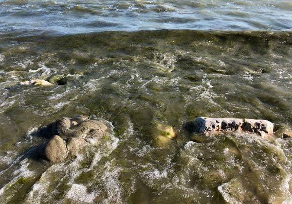 Lağım borusu patladı, Eğirdir Gölü'nü atıklar kapladı