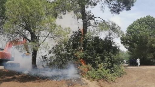 Manavgat'ta çıkan orman yangınında vatandaşlar seferber oldu
