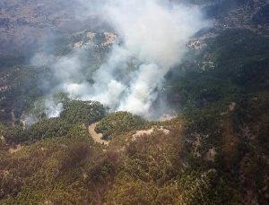 Manavgat'ta orman yangını (3)
