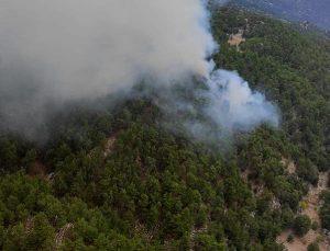 Manavgat'ta orman yangını; 5 saatte kontrol altına alındı (4) – Yeniden