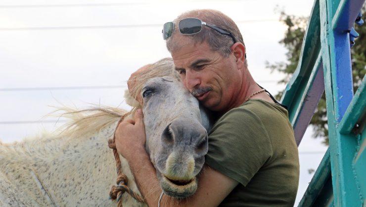 (ÖZEL) Atı çalınan eşinin üzüntüsüne dayanamayan emekli polis, muhbirle atı buldu