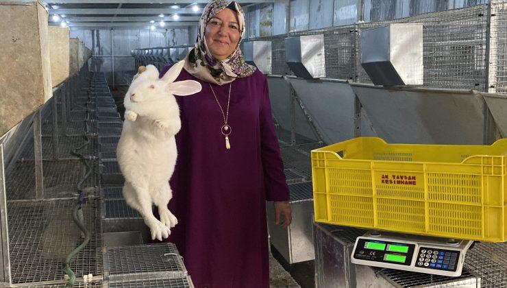 (ÖZEL) Emekli kadın polis hobi olarak başladığı tavşan üretiminde devlet desteğiyle büyüdü