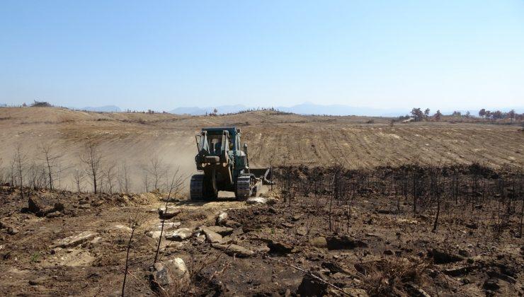 (Özel) Manavgat'ta yanan ormanlık alanlar iş makineleri tarafından dikime hazırlanıyor