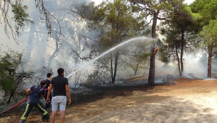 Sorgun Çamlığında çıkan yangında 1 dönüm ormanlık alan kül oldu