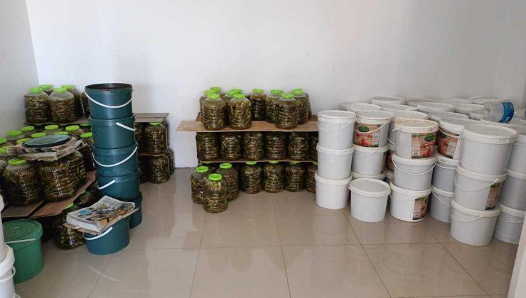 Antalya'da 7,5 ton sağlıksız salça ve turşu ele geçirildi
